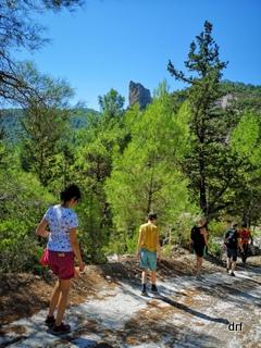 Samos - Hiking, wino i ośmiornica