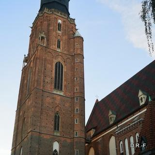 Wrocław św. Elżbieta